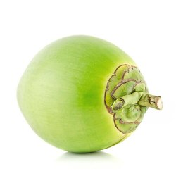 Green Raw Coconut