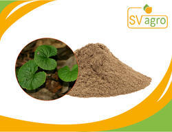 Centella Asiatica Extract, Packaging Size: Pp Polybags,Hdpe Drums