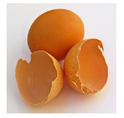 Natural Egg Shell Membrane Powder