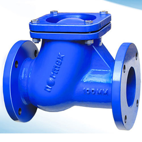 Normex Non Return Valve At Rs 5820   Piece