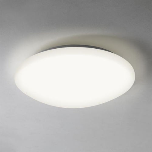 5 W Round Crompton Ceiling Light For Indoor Rs 450 Piece Best Industrial Electricals India Private Limited Id 16497981973