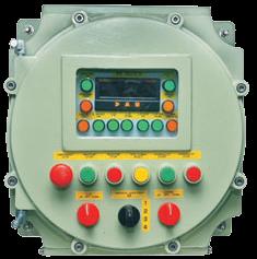 FLP Panel for VFD