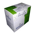 Biogenix Sgot Latex Reagent Set