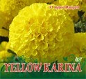 Yellow Karina F-1 Hybrid Marigold Seeds, For Agriculture Purpose