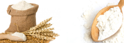 Sabari Wheat Flour for Cooking