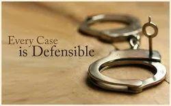 Criminal Law Consultancy Services