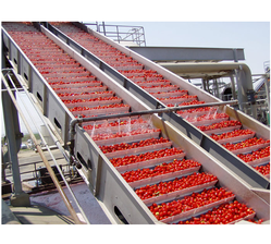 Automatic Standard Tomato Ketchup Plant