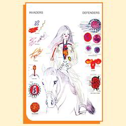 Immune System Chart