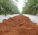 Agro Mulch Film