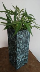 Printed Wooden Flower Pot