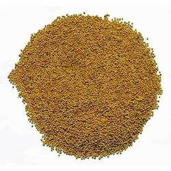 Lucerne- Alfaalfa Seeds, Packaging Size: 1 kg