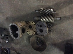 Screw Element Overhauling Services