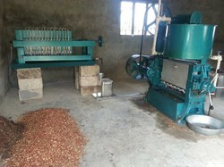 Peanut Oil Extraction Machine