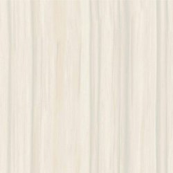 Nano Polished Vitrified Tile
