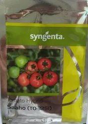 Syngenta Saaho-Tomato Seeds