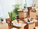 Anywhere In India Offline Delhi Ncr Packers Movers