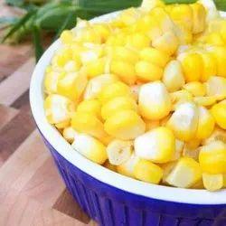Fresh Sweet Corn, Packaging Type: Gunny Bag, Maharashtra