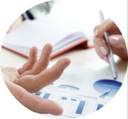 Project Advisory Services