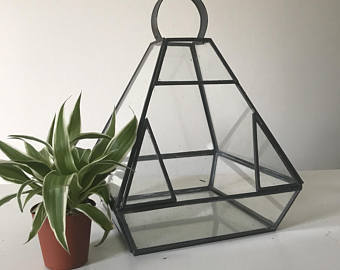 Iron Glass Terrarium At Rs 300 Piece Guiyan Bagh Moradabad