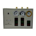 Double Gas Alarm System