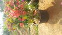 Plastic 15 Liter Pot