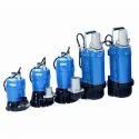 Domestic Industrial Dewatering Pump Repairing Service