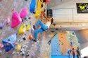 Kids Room Climbing Wall