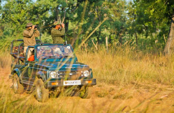 2 Days Of Jeep Safari Exploring Leopard Habitat in Santacruz