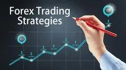 Forex Trader Database Services