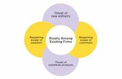 Entry Strategy Analysis And Segmentation Advisory Service