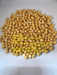 Natural Fried Chickpeas without Skin, Packaging Size: 30kg