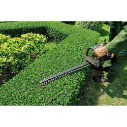 Outdoor Gardening Service