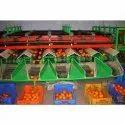 Automatic Orange Grading Machine