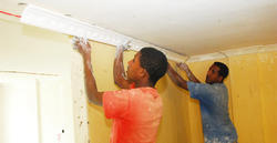 Gypsum Ceiling Work Services