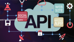 API Development And Integration