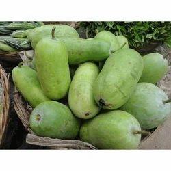 Ash Gourd, Packaging: Plastic Bag or Polythene