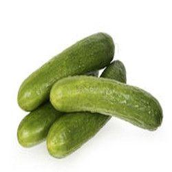 Cucumber Carrier Oil