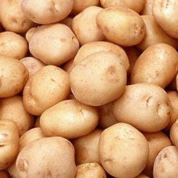 Brown Fresh Potato, Packaging: 50 kg