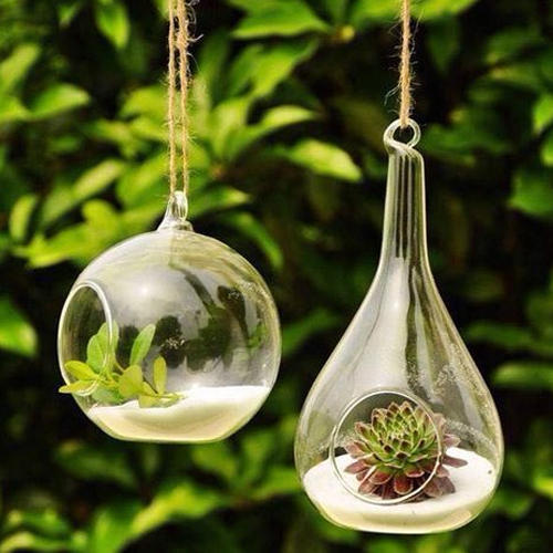 Hanging Glass Plant Bowl