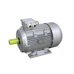 Marathon TEFC Squirrel Cage Induction Motor