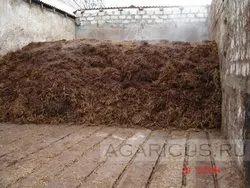 punjab button mushroom compost, Packaging Type: Plastic Bag, Packaging Size: 10 Kg