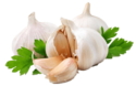 Garlic Flakes