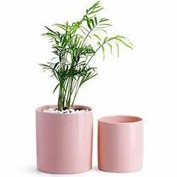 Colored Ceramic Pot