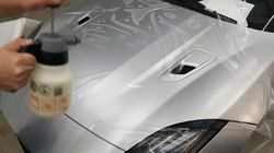 Automobile Paint Protection Coatings Service