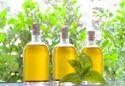 Basil Oil_essential oils