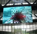 Indoor LED Video Wall