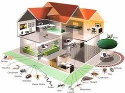 Pest Control Anti Termite Treatment Service, in Ahmedabad