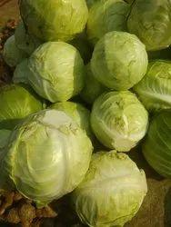 Best Cabbage Cauliflower 20 Rupees Per Kg, Packaging: Plastic Bag or Polythene Bag