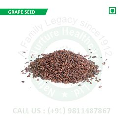 Grape Seed (Muscat, Vitis Vinifera, Muskat, Pine Bark Extract, Pinus Maritima, Pinus Nigra)