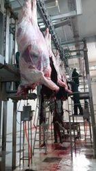 Frozen Buffalo Meat Blade 65
